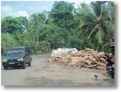 Jalur Saketi Hutan Gundul